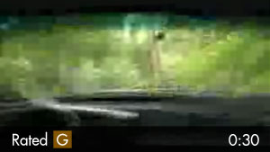 Inexperienced Driver Wrecks Mustang While Racing