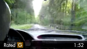 Rally Driver Almost Impaled By Branch